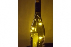 Led Bottle Lights 1