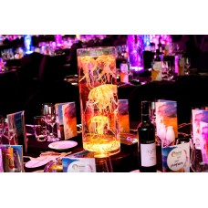 LIGHTED UNDERWATER TABLE CENTREPIECE
