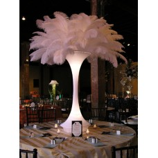 LIGHTED MINI TOWER WITH FEATHERS